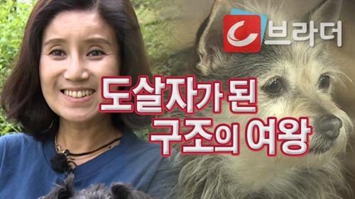 4년간 동물 200마리 몰래 안락사시킨 구조의 여왕 [C브라더] 이미지