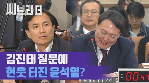 김진태 질문에 웃음 터진 윤석열? '검찰총장 후보자 인사청문회' [C브라더]   이미지