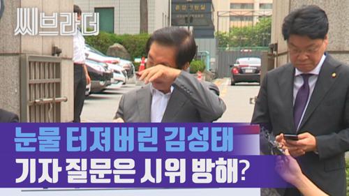 1인 시위하는 김성태 의원에게 기자가 질문하면 '시위 방해'? [C브라더]  이미지
