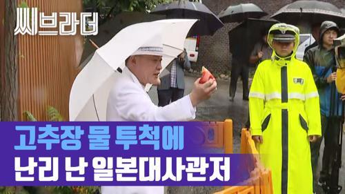 """""""원숭이들 두둔하는 한국인은 뭐냐"""" 일본대사관저 앞 규탄 시위 '고추장 물, 좁쌀' [C브라더]  이미지"""