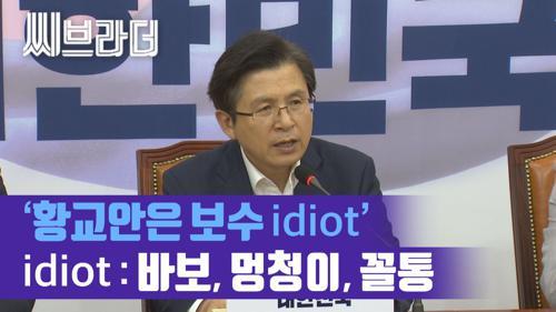 황교안 대표 '문재인 정부에 최후통첩'에 민주당 '황교안 보수꼴통(idiot)' [C브라더]  이미지