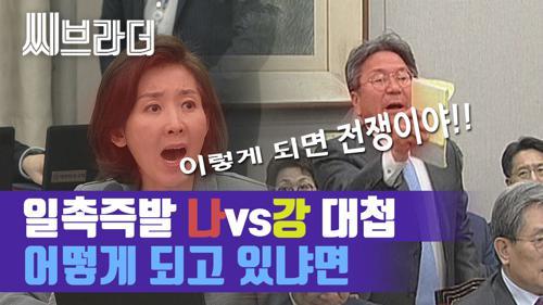 나경원 vs 강기정 대란, 어제자 상황까지 정리해드림[씨브라더]  이미지