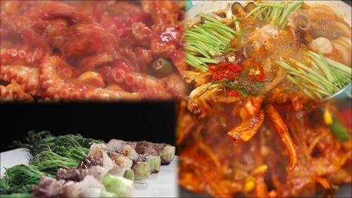 봄 제철 밥상 <알찬 주꾸미 vs 봄나물 고기>_만물상 284회 예고