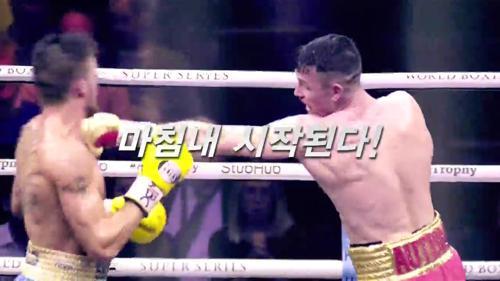 월드복싱슈퍼시리즈 크루저급+슈퍼미들급 결승전 FINAL MATCH