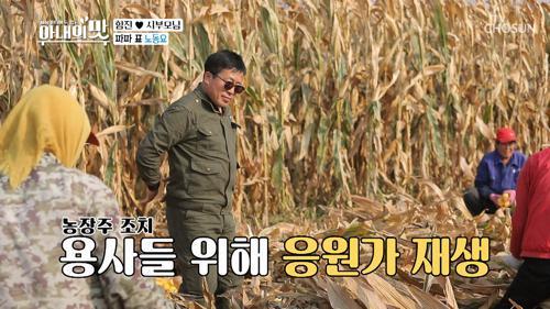 10만평 옥수수 수확 大작전 ♬ 대륙의 농사 스케일