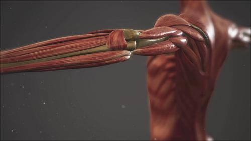 근육 염증 잡는 자연의 선물_위대한 유산 103회 예고
