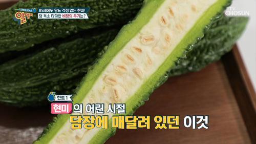 수세미를 닮은 ❛이것❜으로 당뇨 Bye~👋🏻TV CHOSUN 20210103 방송