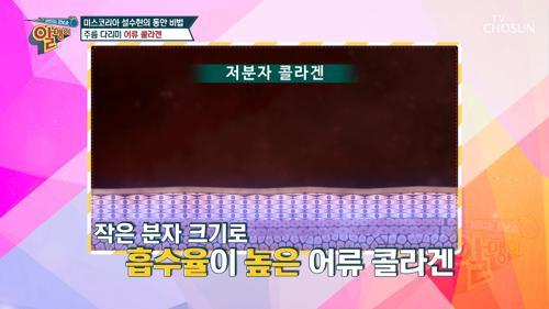 체내 흡수율 UP! '저분자 콜라겐 펩타이드' TV CHOSUN 20210314 방송