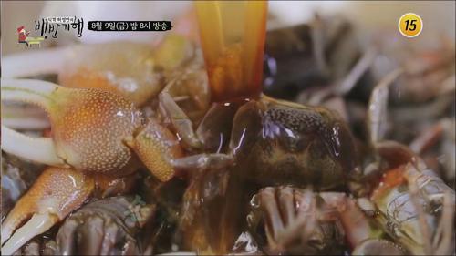섬마을 신안의 농익은 맛!_허영만의 백반기행 11회 예고