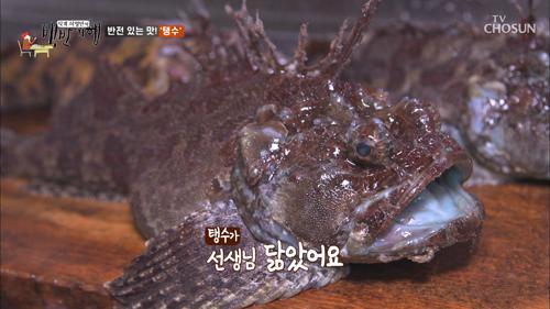 반전 있는 맛 '탱수' 함 보이소~ 예쁘지~예? ^^