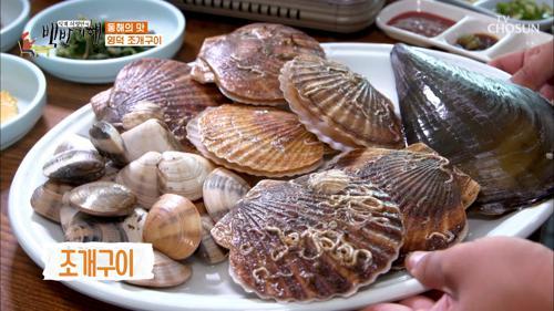 바다의 맛🌊 구이로도 즐기는 '동해안 백합조개'