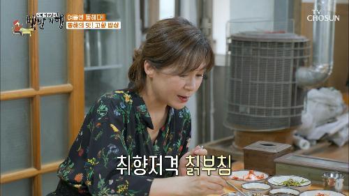 윤기 좔좔~👍 직접 캔 칡으로 만드는 칡부침 TV CHOSUN 20210709 방송