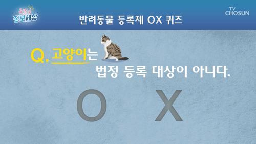 [OX 퀴즈] 고양이는 반려동물 법정 등록 대상이 아니다?!