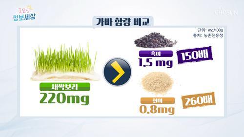 청혈 식품 '새싹보리' 섭취 방법은?