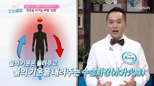 혈관 건강부터 면역력 향상에 효과적인  'OO'
