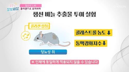 「혈관 노화」 막아주는 콜라겐의 효능!