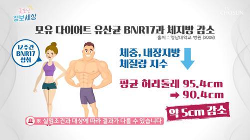 '이것' 먹고 허리둘레 –5cm 감소⊙⊙?! #광고포함