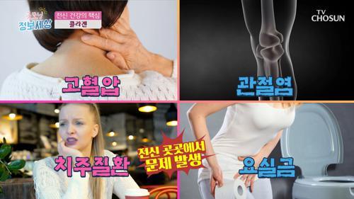 콜라겐 부족하면 생기는 질환들 ✓ #광고포함
