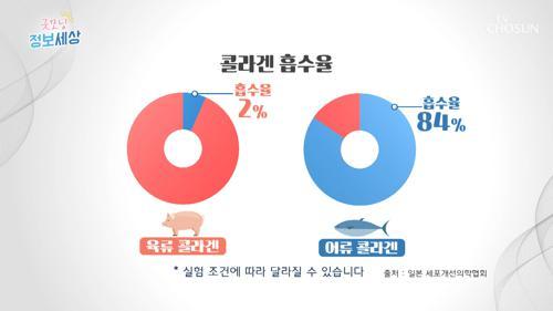 '육류vs어류 콜라겐' 흡수율 차이는? #광고포함