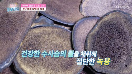 체온 상승·면역력 까지 잡는 '○○' 🦌 #광고포함