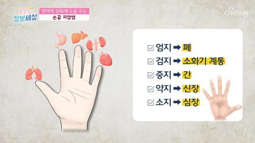 오장육부의 정기를 끌어올리는 「손끝 지압법」 #광고포함