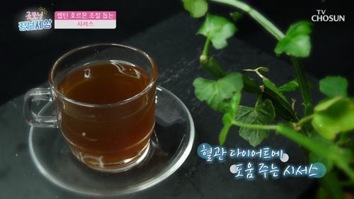 참기 힘든 식욕 막아주는 〈시서스〉 TV CHOSUN 210115 방송