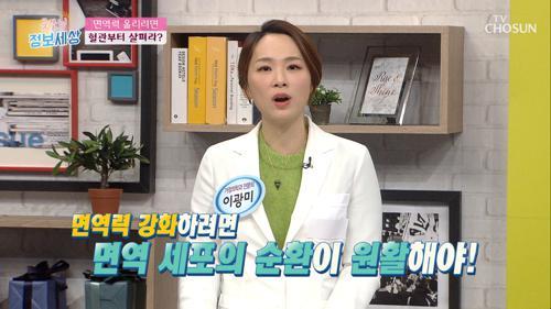 면역력 강화하려면 '혈관 건강'부터 챙겨라! TV CHOSUN 210119 방송