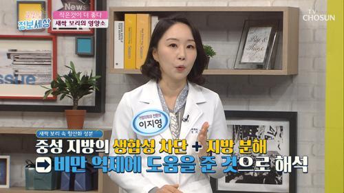 새싹 보리🌱 비만 억제 & 해독 다이어트에 도움 TV CHOSUN 2103225 방송