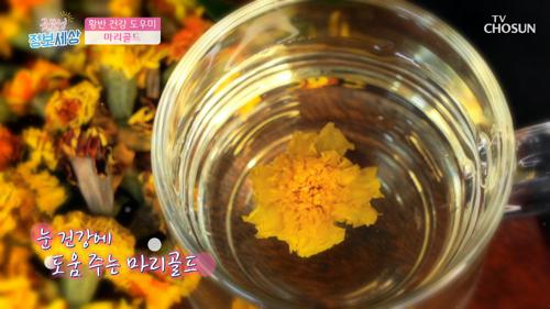 ✿마리골드✿ 실명 질환 예방 및 황반 건강 도우미 TV CHOSUN 210413 방송