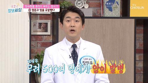 탄수화물 중독이 불러오는 다양한 질병들 TV CHOSUN 210721 방송