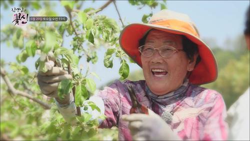 예천 사과밭 꽃향기 가득한 사연의 어머니_김영임의 꽃신 4회 예고