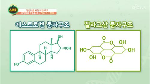 에스트로겐과 유사한 분자구조 '엘라그산'