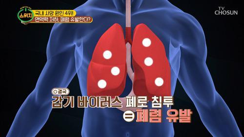 면역력이 저하 될 경우 '폐렴' 유발한다?! ☹