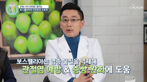 관절염에 ▶보스웰리아◀가 도움 되는 이유는 ??