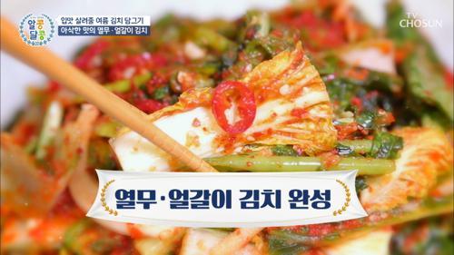 여름철 별미 ✧열무·얼갈이✧ 김치 만들기 꿀Tip