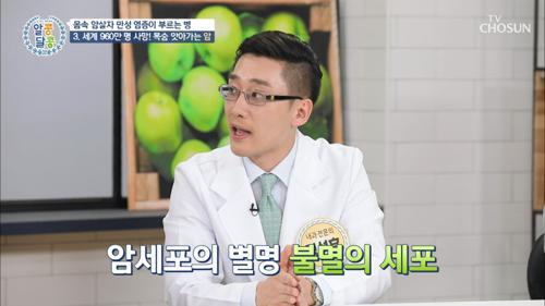 '만성 염증'이 부르는 질병 TO3 체크✓
