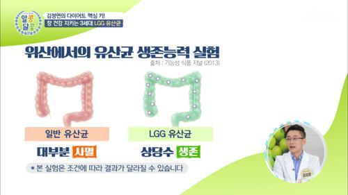 위산에서 LGG유산균 생존능력 결과는? #광고포함