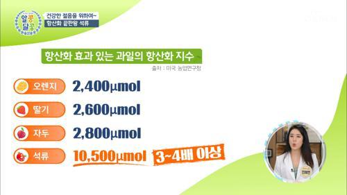 과일별 『항산화 효과』 비교 #광고포함