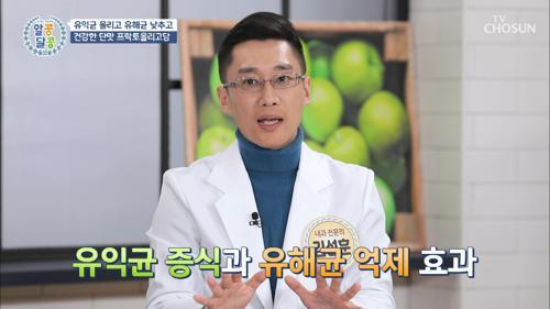 장 건강과 다이어트에 좋은 ✧프리바이오틱스✧ #광고포함