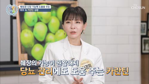 췌장과 신장 기능에 도움을 주는 ⋄여주⋄ #광고포함