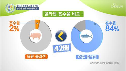 〈어류 콜라겐〉 체내 흡수율 높여 건강에 도움👍🏻 TV CHOSUN 210114 방송