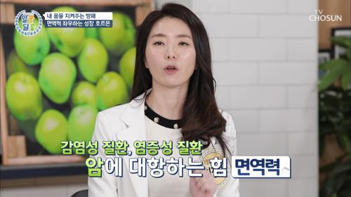 건강 백세로 가는 회춘의 열쇠 '성장호르몬' 채워라↑TV CHOSUN 210121 방송