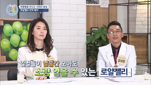 장수와 회춘을 돕는 「로얄젤리」 꿀의 종류다? TV CHOSUN 210121 방송