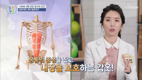 몸을 지탱하는 ⋄3대 항중력근⋄ 건강 장수의 조건✓ TV CHOSUN 20210401 방송