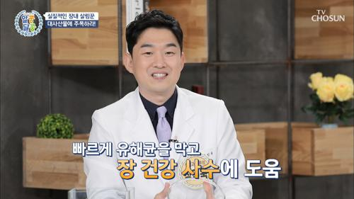 다이어트의 성공의 기본 장 관리 『포스트바이오틱스』 TV CHOSUN 20210415 방송