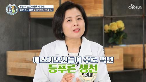 ❛이것❜으로 중성지방 낮추고⇩ 혈관 건강 해결하자😉 TV CHOSUN 20210909 방송