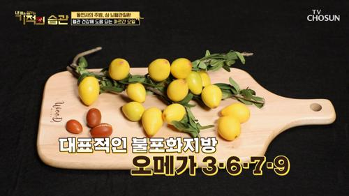 혈관 건강에 좋은 착한 지방 ✦아르간오일✦ #광고포함