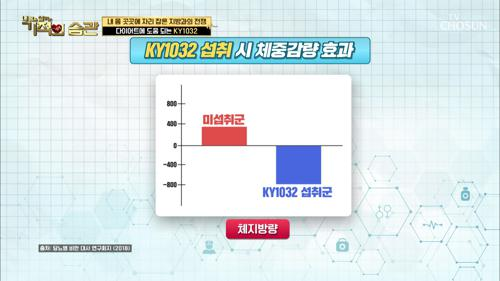 체지방 감소 도움 되는 'KY1032' 유산균주 TV CHOSUN 20210112 방송