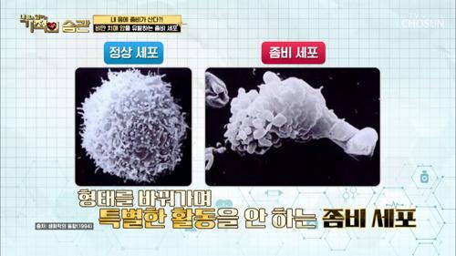노화속도↗ 주변 정상 세포까지 망가지게 하는 '좀비 세포' TV CHOSUN 210406 방송