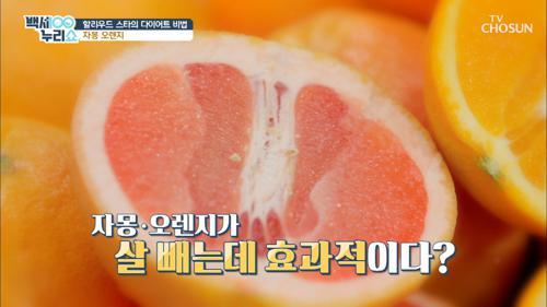 1조 원의 엉덩이? 😱  제니퍼 로페즈 다이어트 비법☆